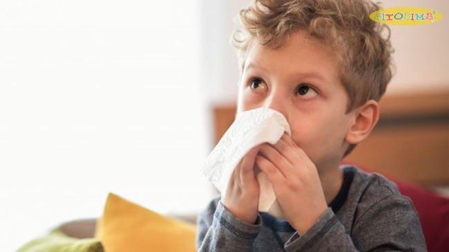 """Fitobimbi Propoli - Siro thảo dược giảm ho do cảm lạnh """"thay"""" mẹ bảo vệ đường hô hấp cho bé yêu"""