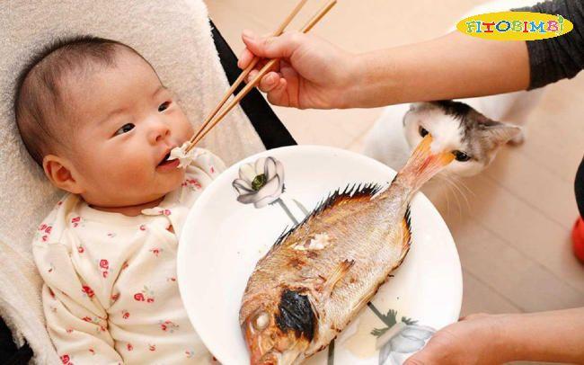 Cá hồi giàu acid Omega 3 tốt cho não bộ của trẻ