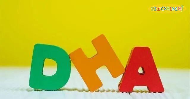 DHA chiếm tỷ trọng lớn trong não bộ và võng mạc