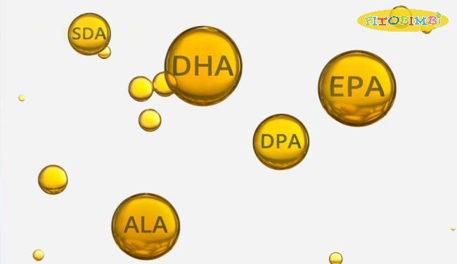 DHA là một trong 3 acid béo Omega 3 quan trọng của cơ thể