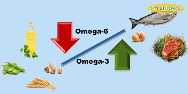 Omega 3, Omega 6 rất tốt cho sự phát triển não bộ