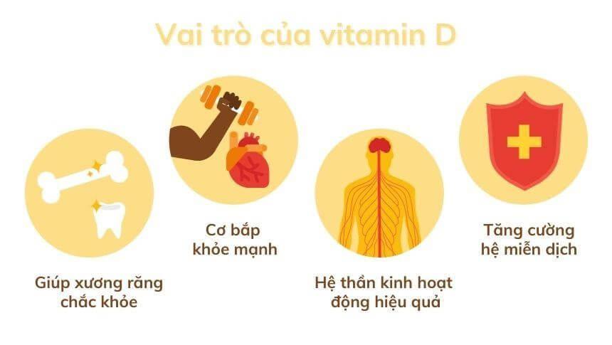 Vitamin D3 có nhiều vai trò quan trọng với trẻ sơ sinh