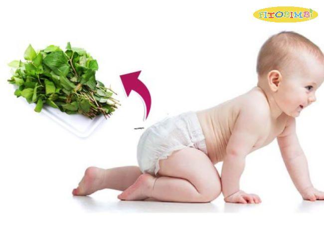 Bật mí cách dùng rau diếp cá trị ho cho trẻ sơ sinh