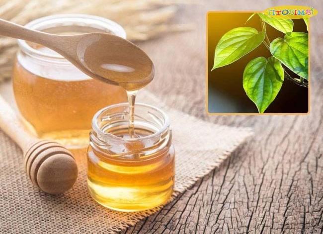 Chữa ho cho bé bằng lá trầu không và mật ong