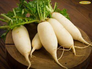 Chữa ho cho trẻ bằng củ cải trắng