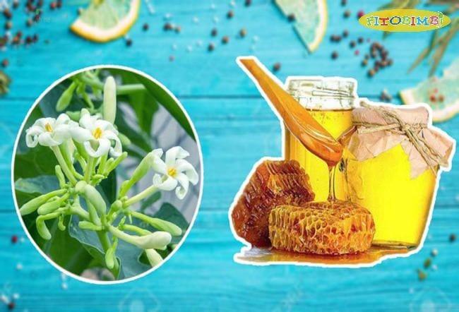 Hoa đu đủ đực kết hợp với mật ong