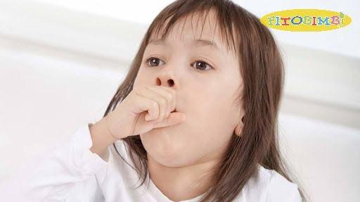 Lá trầu không chữa ho cho bé là phương pháp an toàn, lành tính