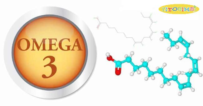 Omega 3 là dưỡng chất thiết yếu của mọi tế bào trong cơ thể