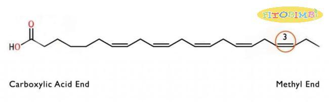 Cấu trúc của axit béo Omega 3