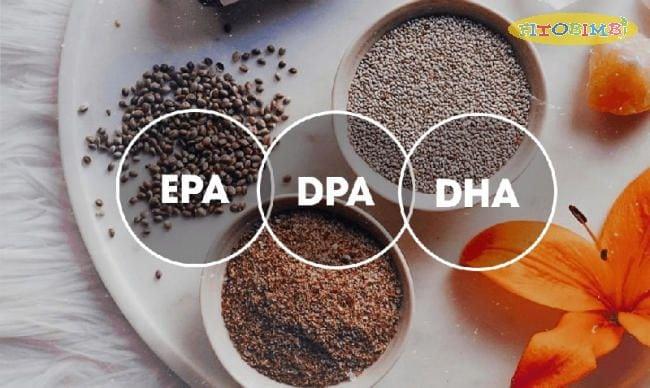 EPA, DHA, DPA có mối liên hệ trung gian với nhau