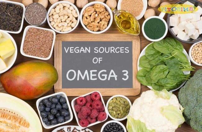 Giải mã sức hút Omega 3 thực vật - Lợi ích mang lại cho con người là gì?