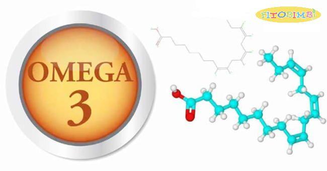 Omega 3 là dưỡng chất quan trọng của cơ thể
