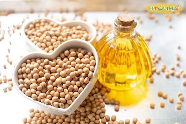Omega 3 từ thực vật rất tốt cho tim mạch